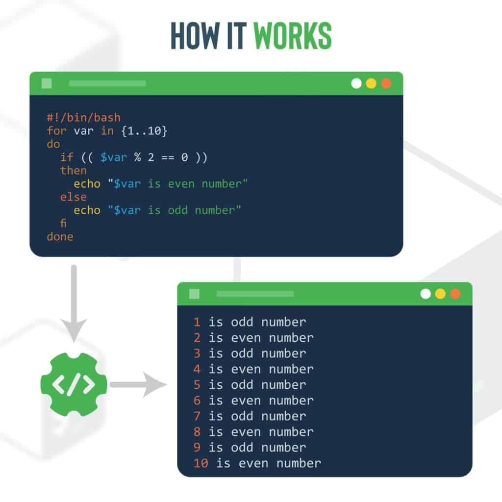 if-else within for loop (Bash example)
