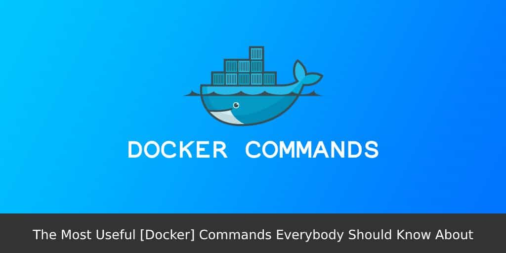 The-Most-Useful-Docker-Commands-Everybody-Should-Know-About