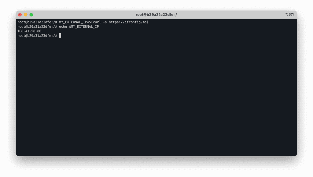 4. How to use CURL like a Pro in Linux - Example - Get external IP address (bash variable)