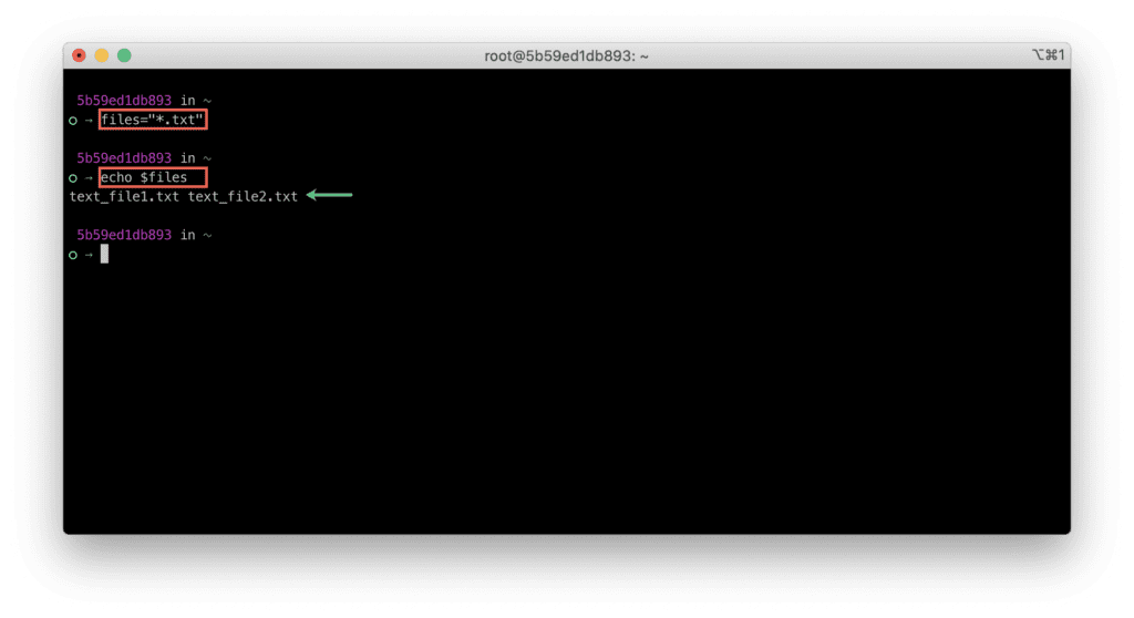 18. Which terminal is better - Bash VS Zsh - Bash - List files wildcard expression