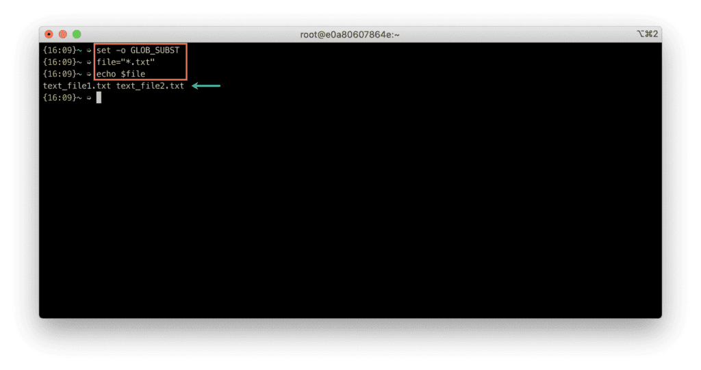20. Which terminal is better - Bash VS Zsh - Zsh - List files wildcard expression - success