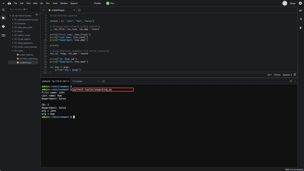 3. Working with Tuples in Python - Unpacking skipping elements