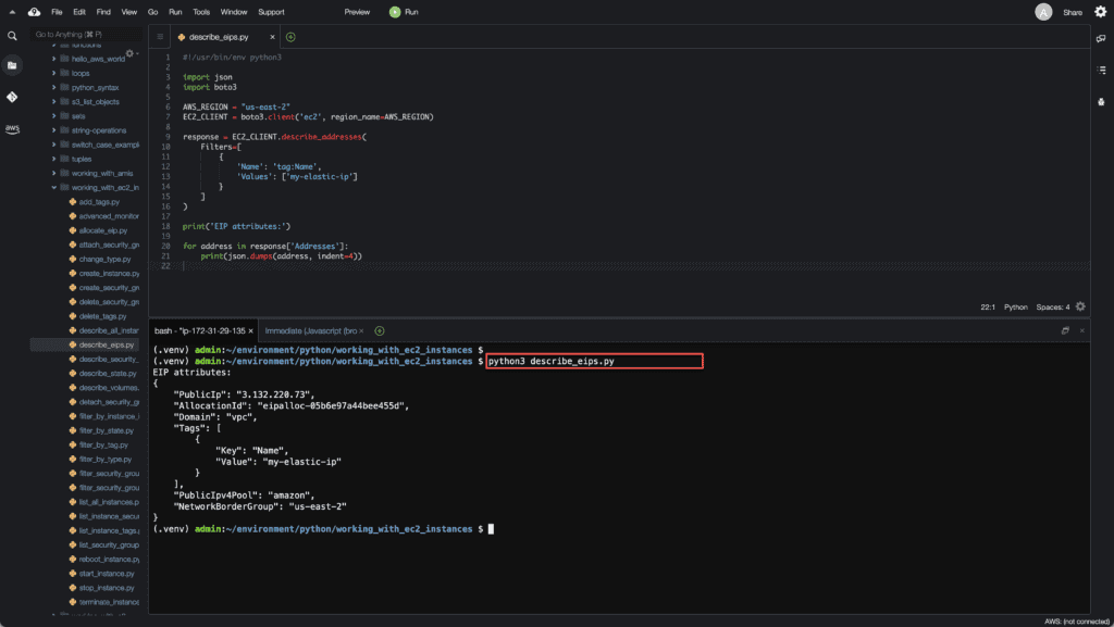 34. Working with EC2 Instances using Boto3 in Python - Describe EIP