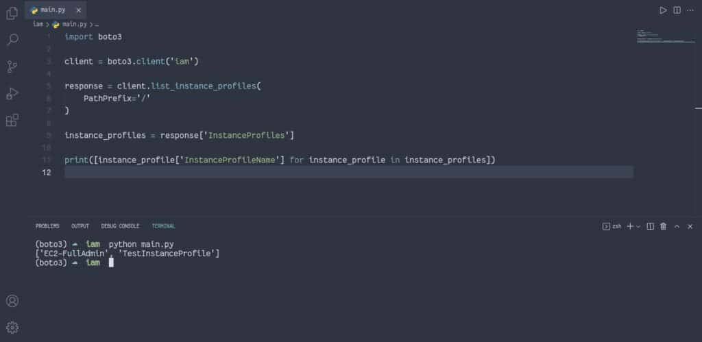 Filter IAM instance profiles by using client